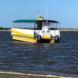 Island Picnic Cruise & Shelling