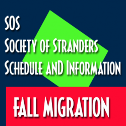 SOS Fall Migration